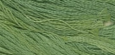 Little Sprout ~ 259 ~ Hand dyed cotton floss from Classic Colorworks ~ 5 yard skein