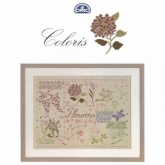 DMC Coloris  Flowers Pattern Book